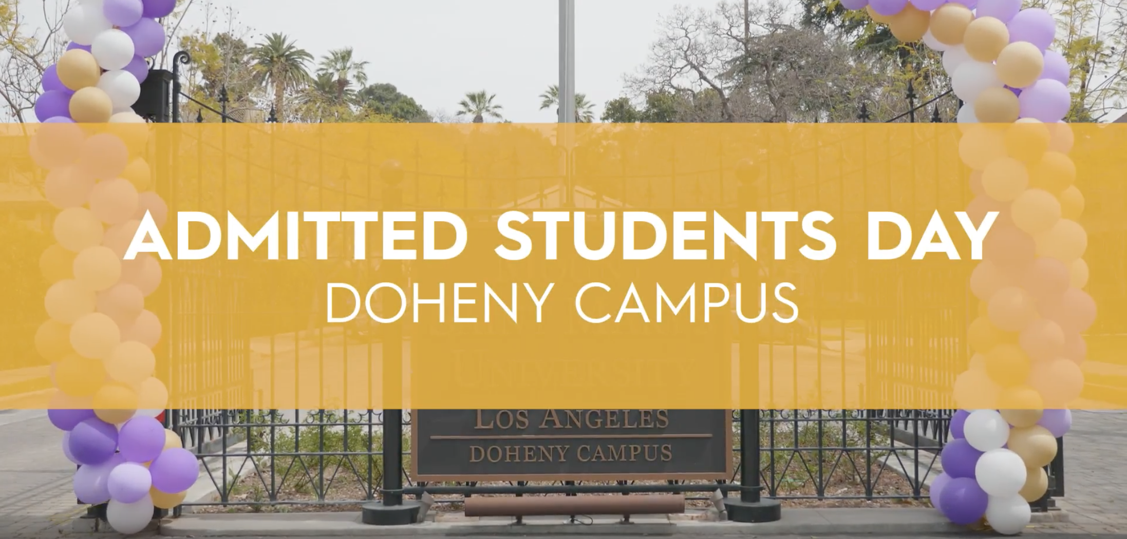 Admitted Students Day Banner