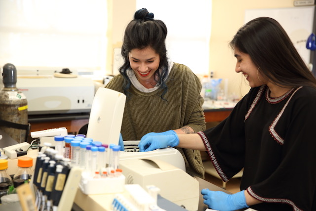 (From left) Mount students Alissa Oakes and Arleen Lamba work together in a campus lab on the NIH-funded research project.