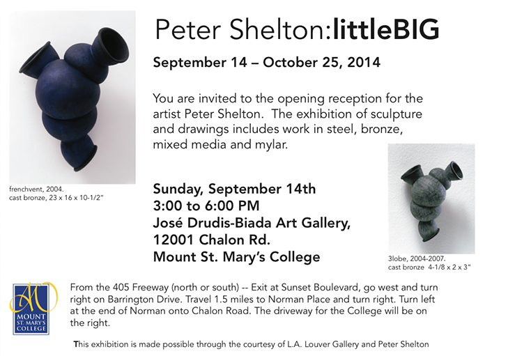 Peter Shelton - littleBIG